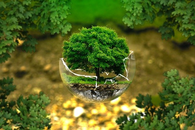 ochrana životního prostředí