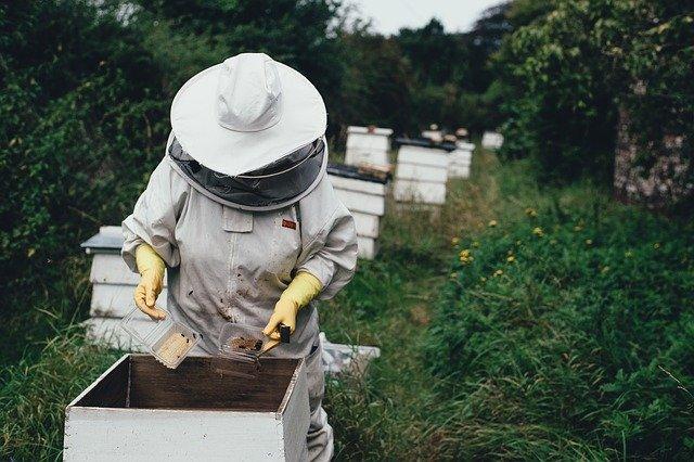včelař u úlu