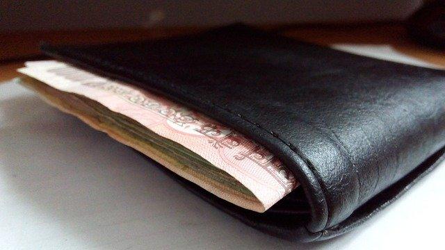 bankovk lezoucí z peněženky
