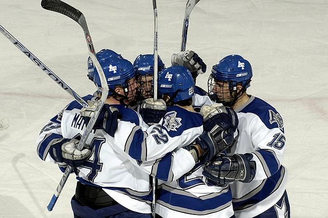 hokejisti na ledě
