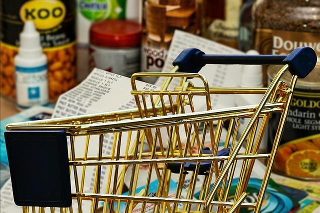 nakupování potravin.jpg
