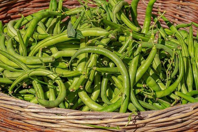 koš zelených fazolí